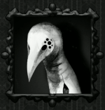 Black_Doom