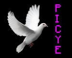 Picye