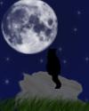 *Nachthimmel*