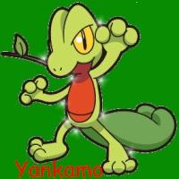 yankamo