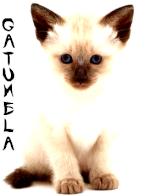 Gatumela