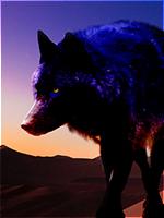 Desert_Wolf