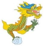 Dragon Conseil
