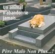 PereMalo