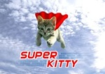 Sky Kitten