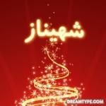 لغة وأدب عربي 39136-17