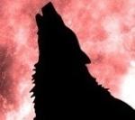 icewolf350z