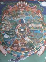 DM-Samsara