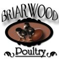 BriarwoodPoultry