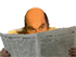 troll26