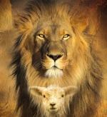 lion406