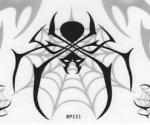 spidersuzuk