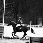 cheval94