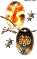 eckinox