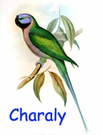 Charaly