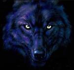 Dark_Wolf