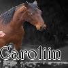 Carolin
