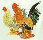 Les races de poules américaines 7188-15