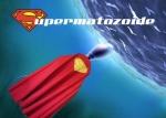 supermatozoide