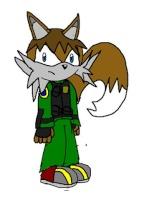 Netko the Fox
