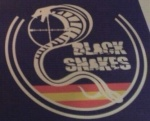 blacksnakes