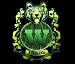 WildTigers