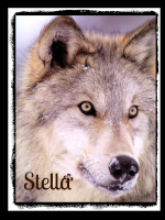 ~Stella~