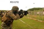 peyote86