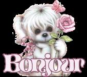 F-Rose Bon