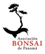 AK_Panama