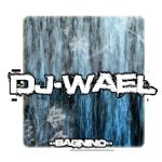 dj wael