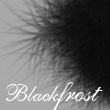 Blackfrost