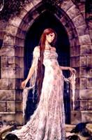 midnigth fantasy