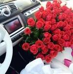 عاشقة الورد