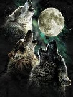 Umbrawolf