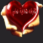 محمد السالم أغنية قلب قلب وين وين