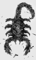 xxScorpion64xx