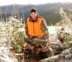 moose 47