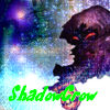 ShadowCrow