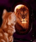 LionStride