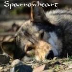 Sparrowheart