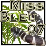 Missbleu07