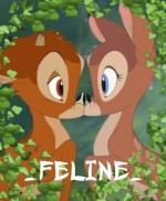 _FELINE_