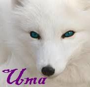 Uma ~