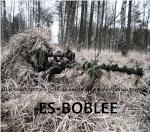 -ES-BobLee