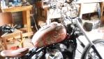 flea2008