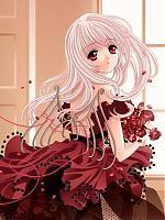 Dark Crimson Rose