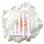 OumSa3ad