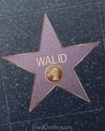 wali-09