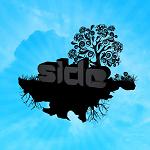 side501
